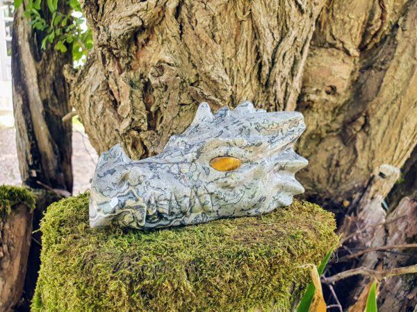 dragon en jaspe crocodile